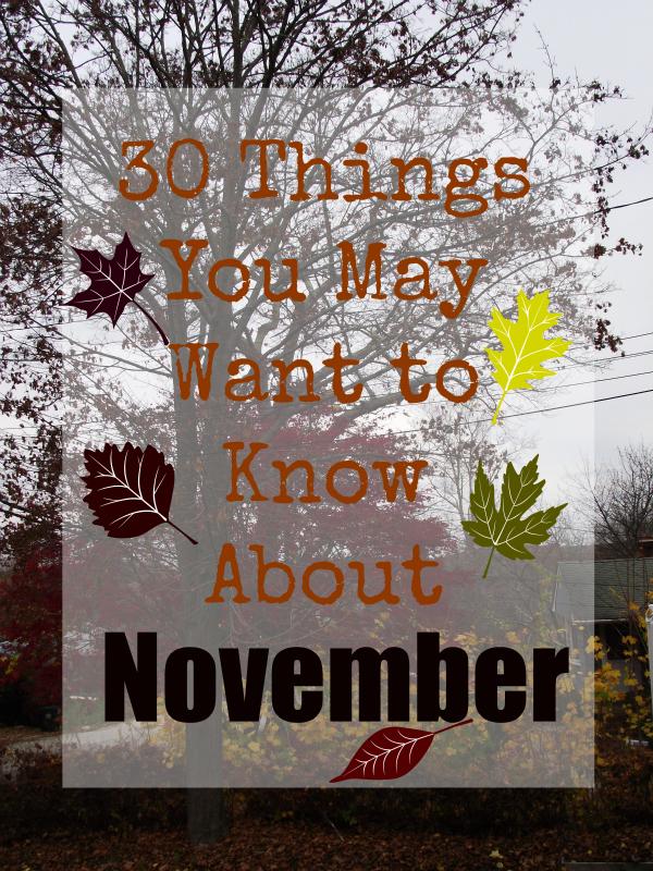 30 Things November