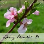 Living-Proverbs-31-e1372080734415