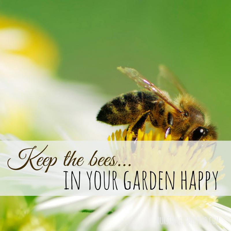 bees-happy